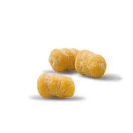 Gnocchi Con Zucca Kg 1,5x4 CT   4